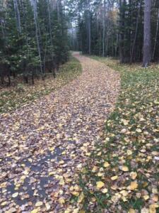 Trail-6